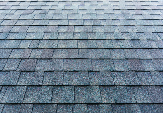 Architectural shingles Grey Bruce Real Estate