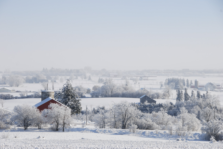 Between Walkerton & Hanover (Winter), Walkerton Real Estate, Hanover Real Estate - Lee Cardwell