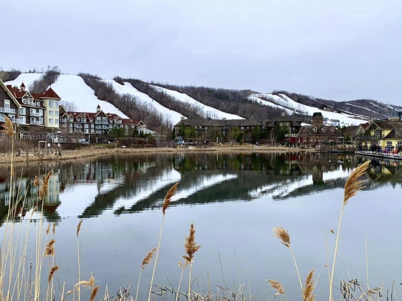 Blue Mountain Village Blue Mountains Real Estate - Tina B