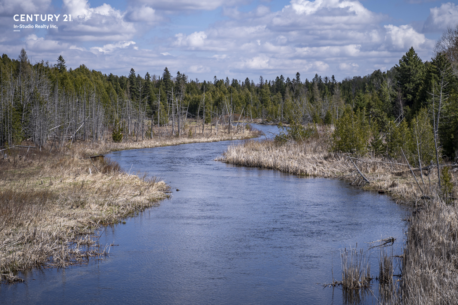 Saugeen River, Markdale