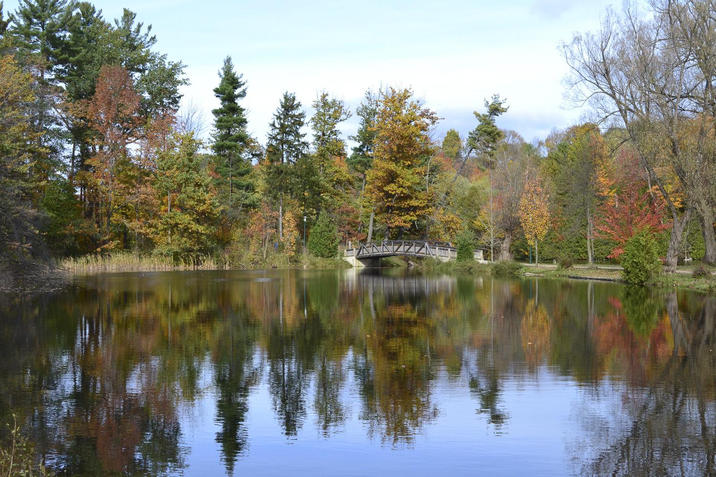 Harrison Park (Fall), Owen Sound Real Estate - Mary Blair