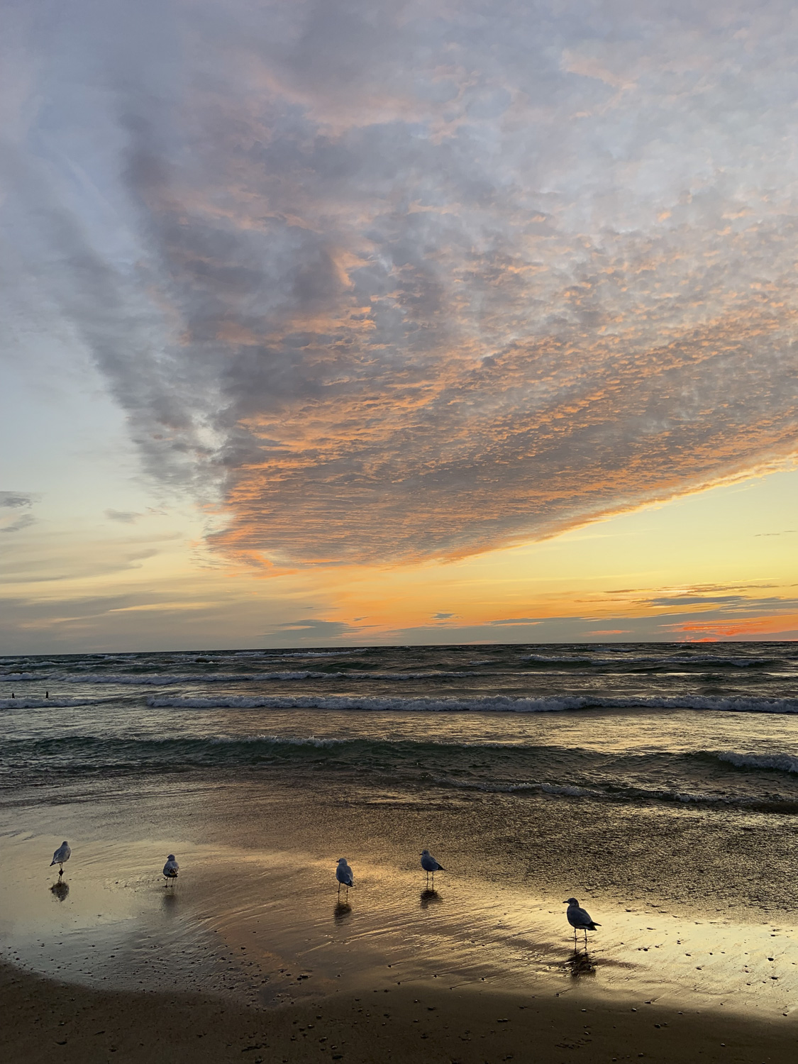 Sauble Beach Sunset with Seagulls, Sauble Beach Real Estate, South Bruce Peninsula Real Estate