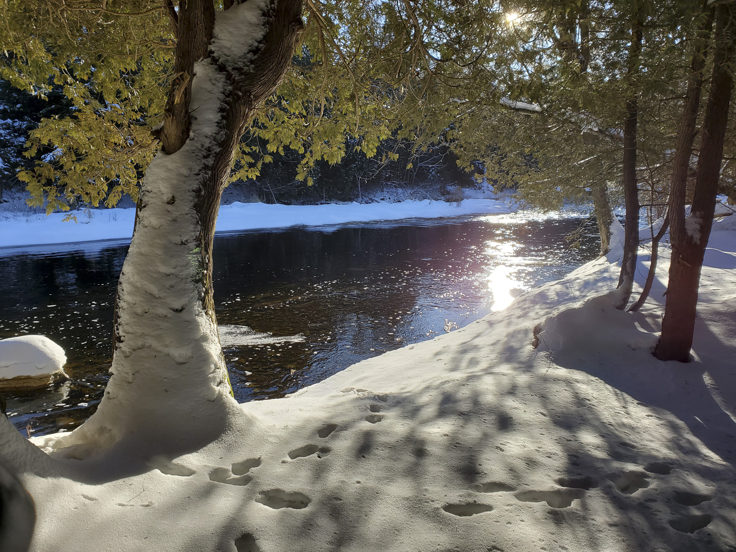 South Saugeen River Winter, Hanover Real Estate