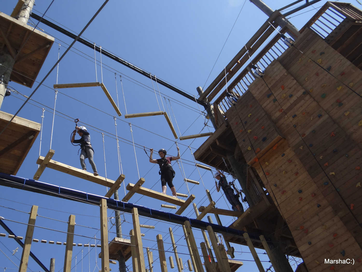 Ascent Aerial Park, Sauble Beach Real Estate, South Bruce Peninsula Real Estate