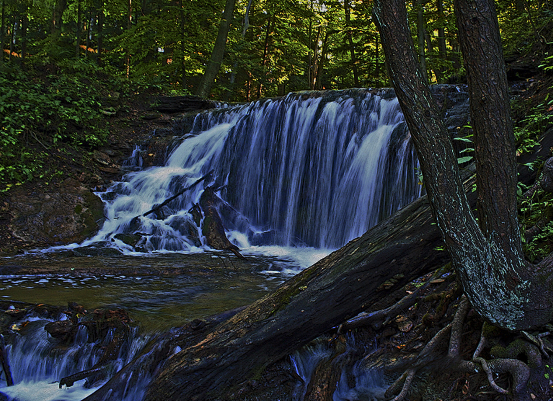 Weaver's Creek Falls (Harrison Park) Owen Sound Real Estate- Brenda Salomone