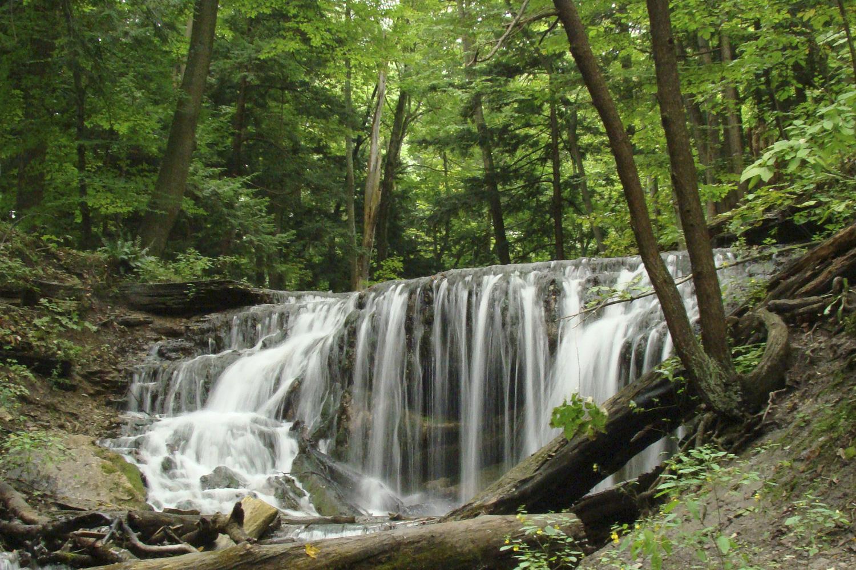 Weaver's Creek, Harrison Park, Owen Sound Real Estate - Mary Blair