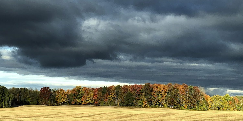 Autumn Drama, Hanover Real Estate - Maryanne McGeachy
